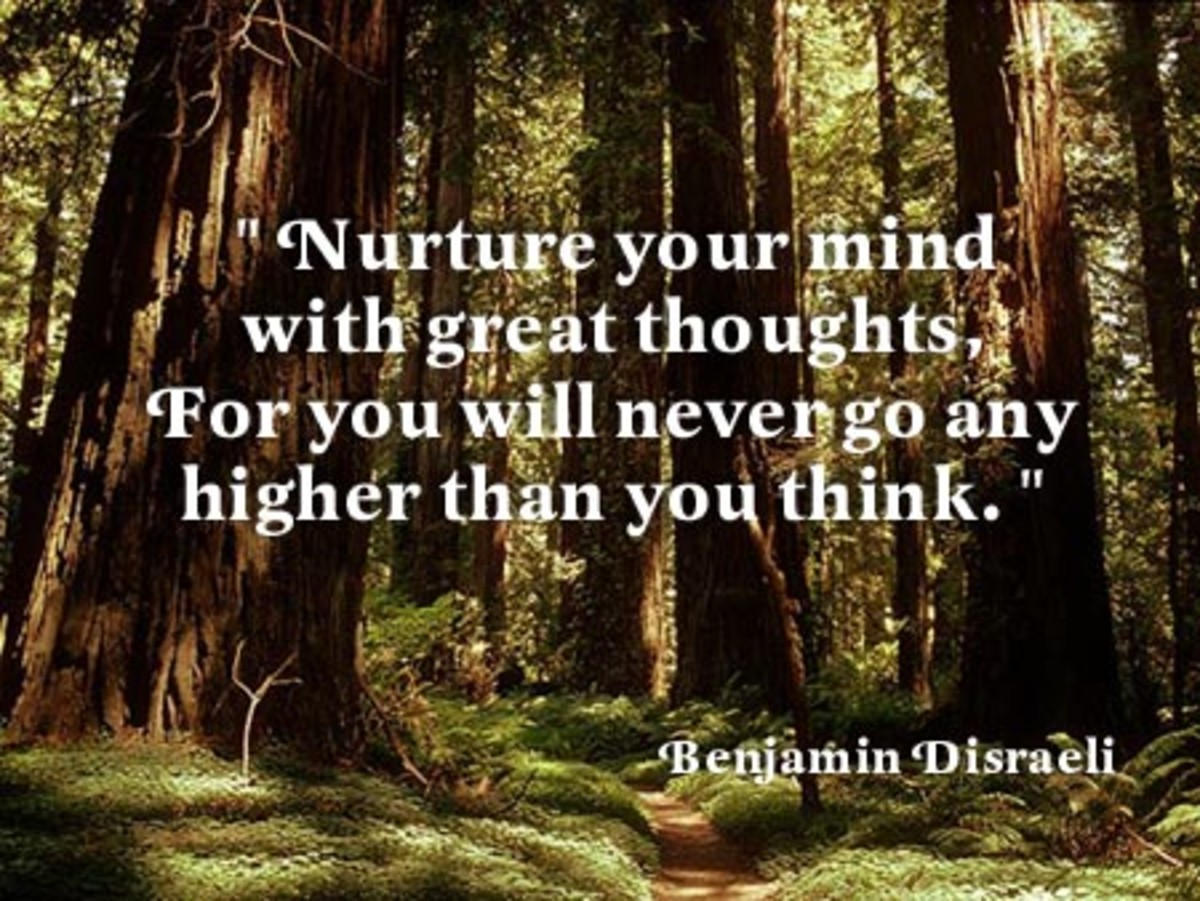 Nurture your mind with great thoughts for you will never go any higher than you think  Benjamin Disraeli