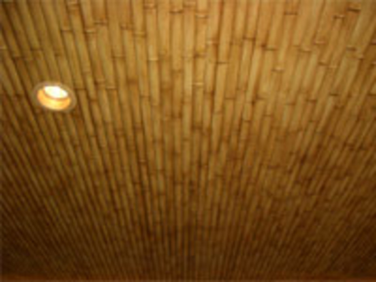bamboo ceiling