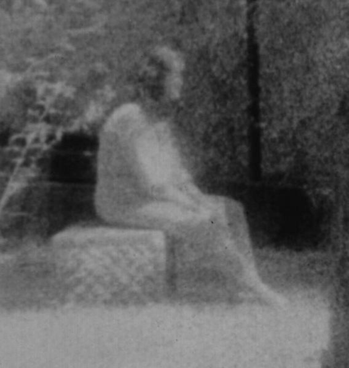Image of the supposed ghost