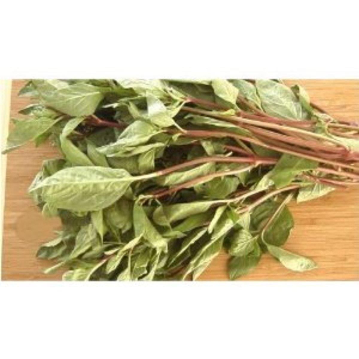 Thai Basil: Antibacterial Herb