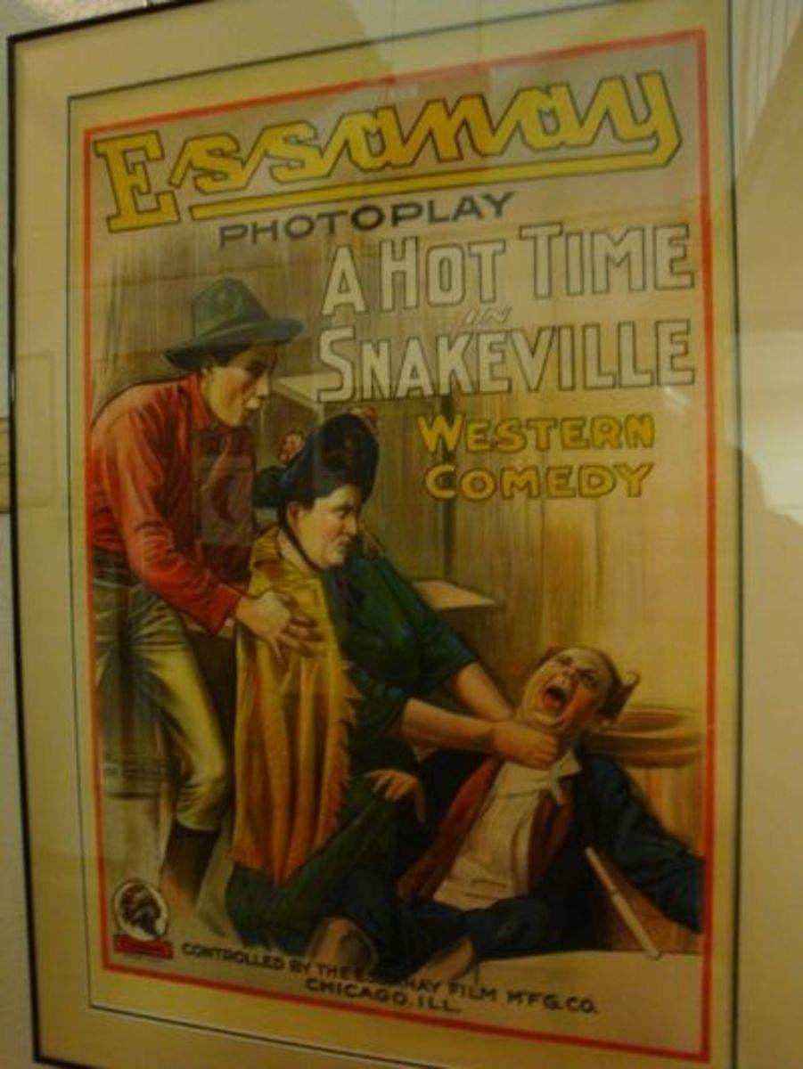 Snakesville Bunch Poster