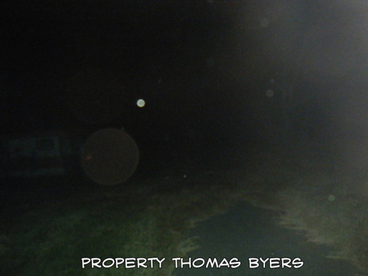 This is the location outdoors where I often see Shadow People. Notice all the Orbs in the photo.
