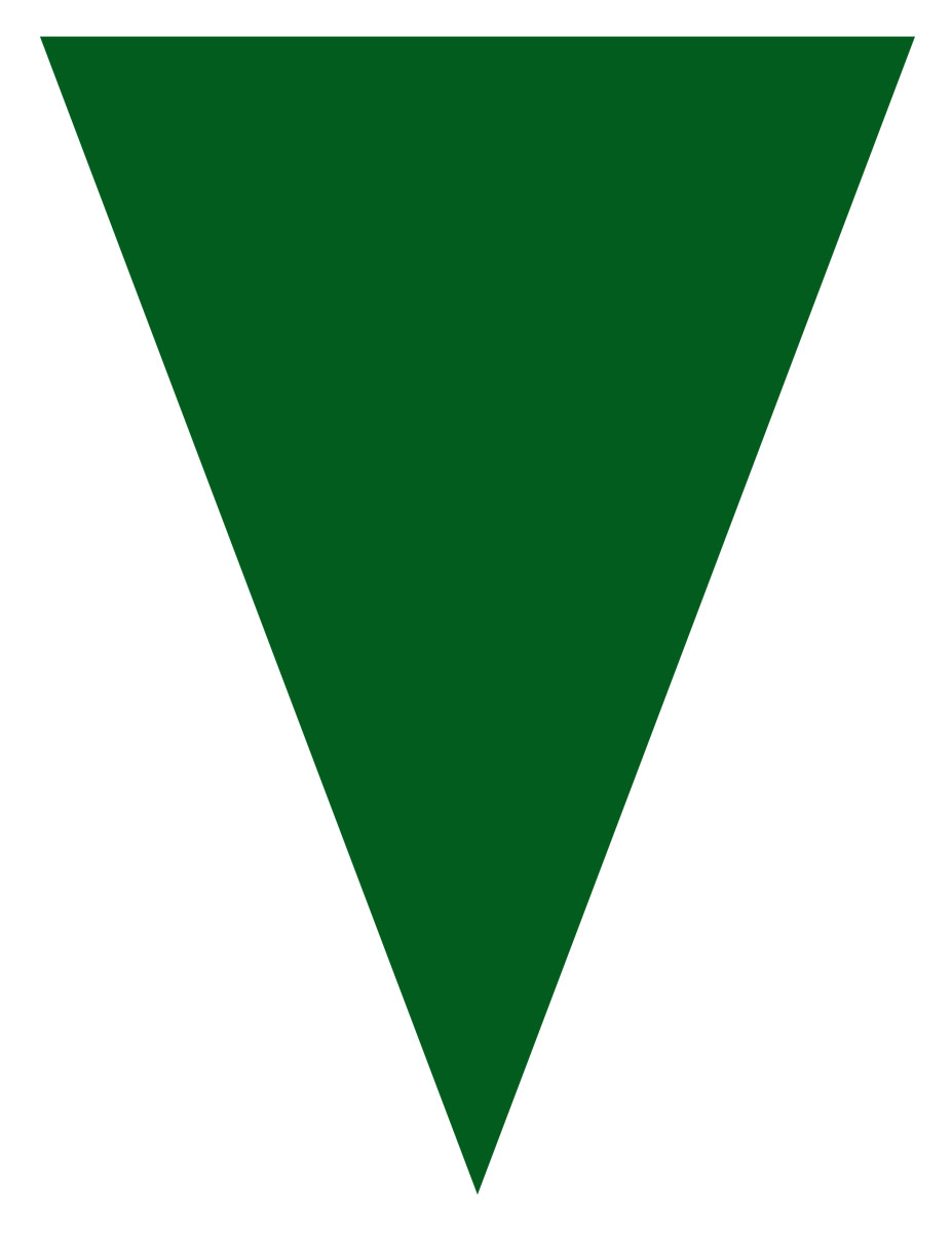 Blank graduation flag -- green