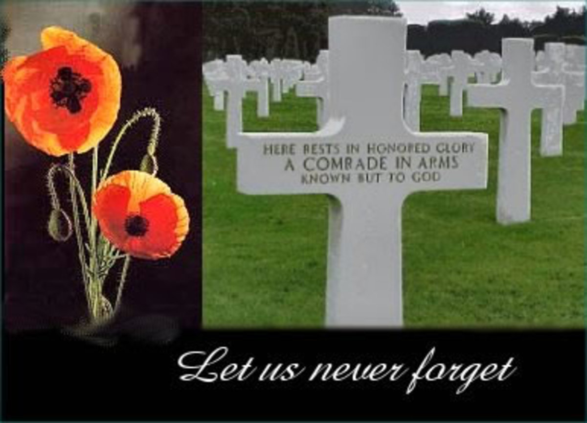 memorial-day-veterans-day-rembrance-day-poppy-day-honoring-our-vets-lest-we-forget