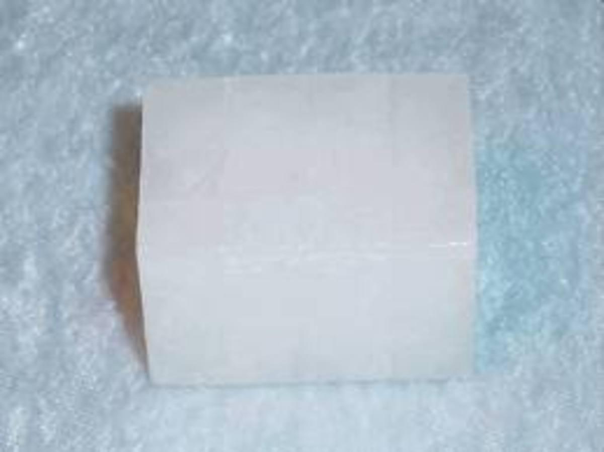 camphor cube