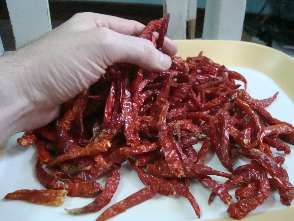 3 ounces of dried Thai chilies ready for hot-saucifying