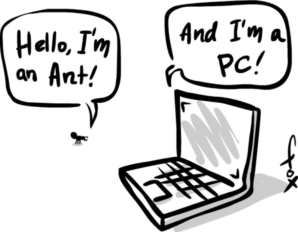Laptop ants.