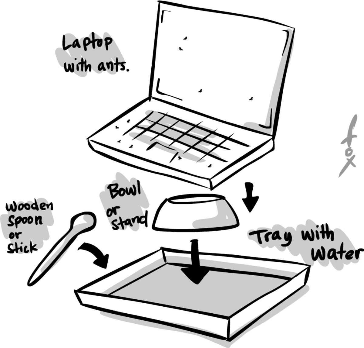 Assembling your laptop ants solution.