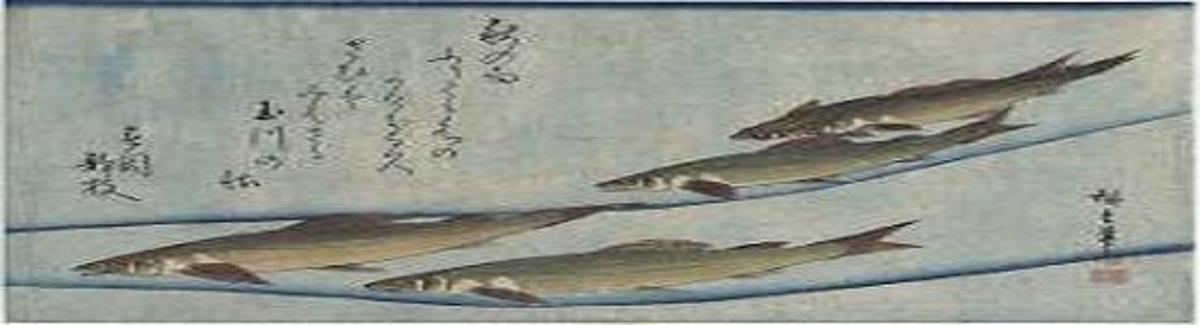 Trout - by Ando (Utagawa) Hiroshige.
