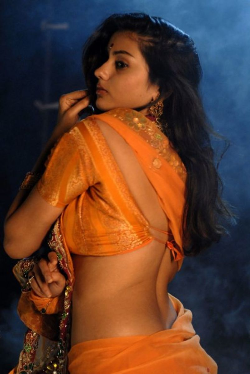 South Indian Actress Namitha in Orange Saree - Pictures and Photos