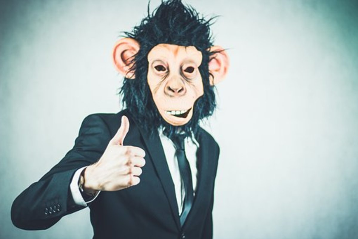 A monkey suit (in this case a monkey in a tuxedo), can often make a man look a little foolish.