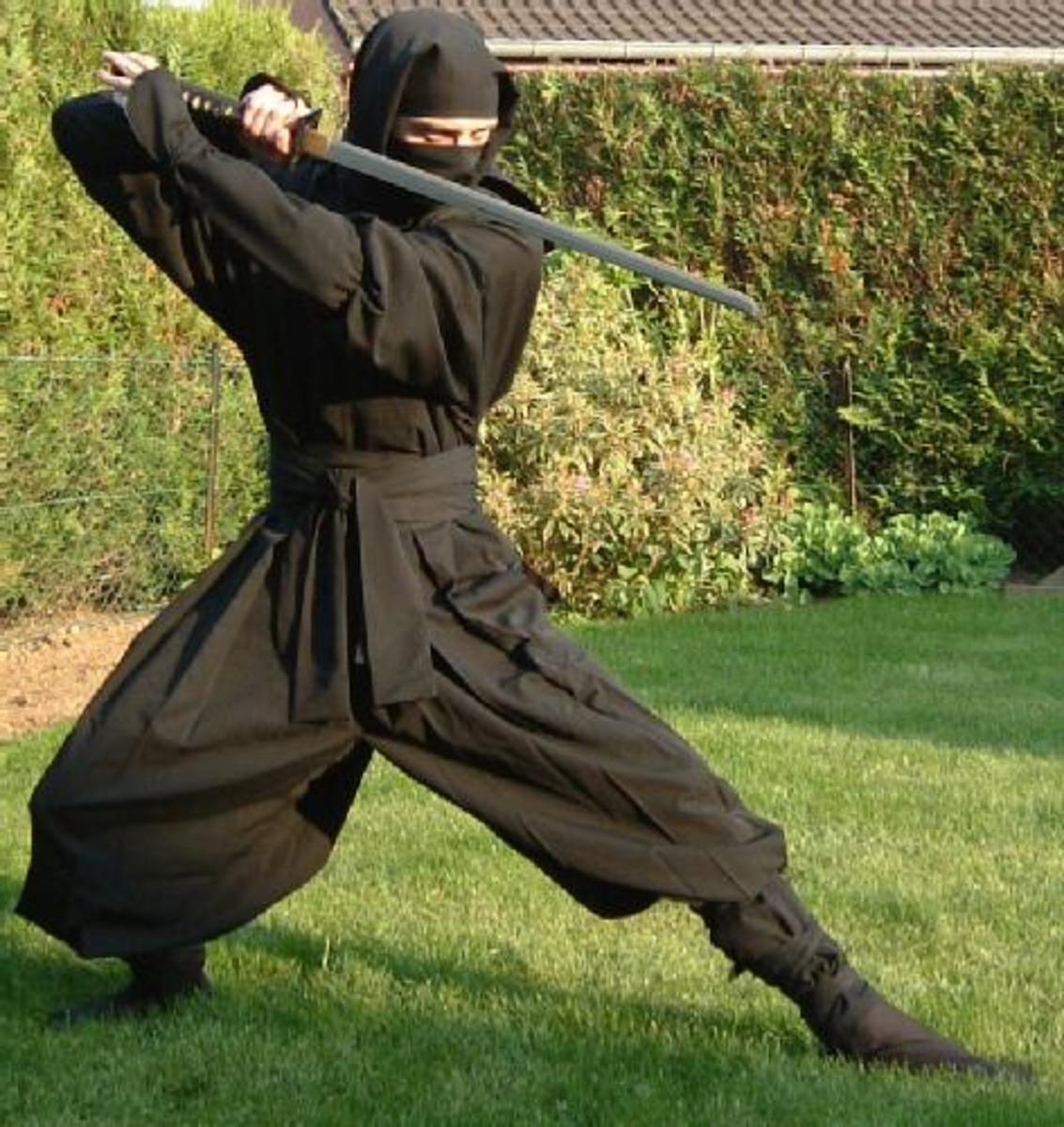 Ninjutsu, Japanese Martial Art of Ninja Espionage