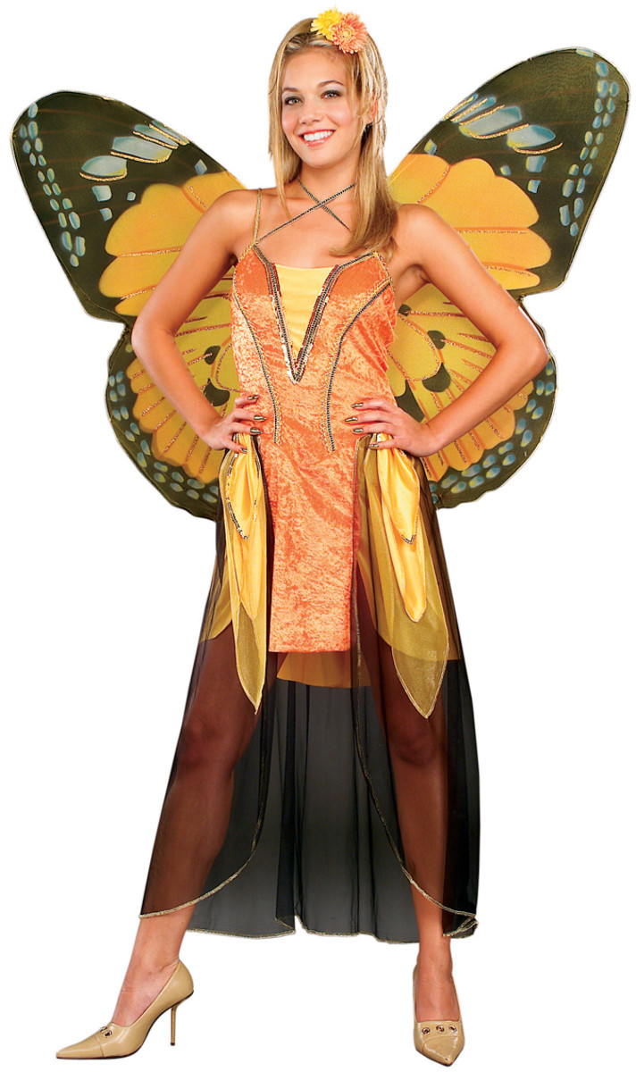 Viceroy Butterfly costume