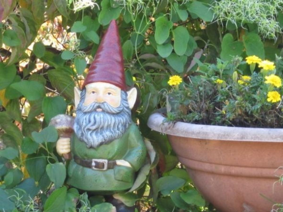Garden Gnome with Flowers and Plants