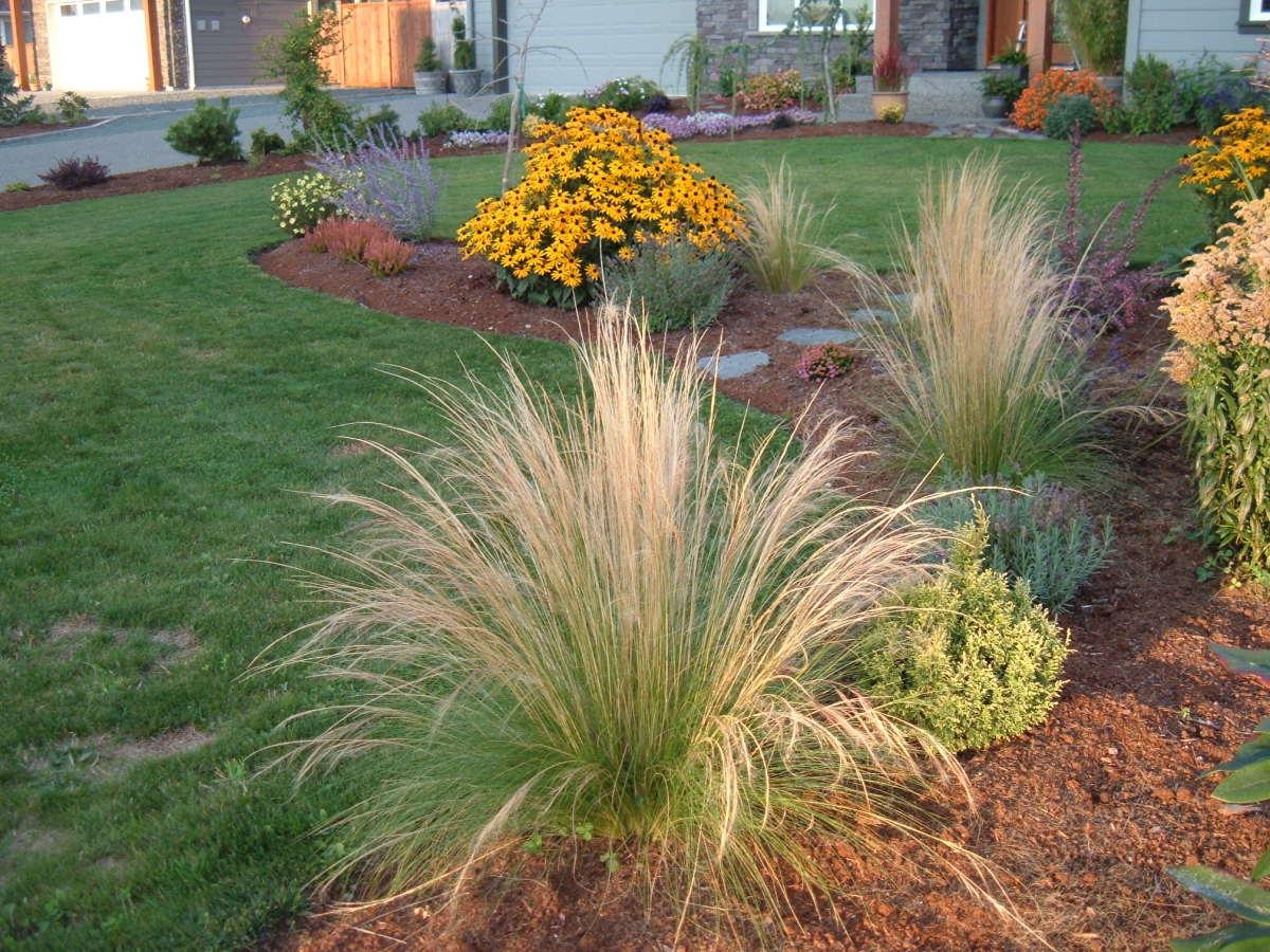 Deer-resistant landscaping
