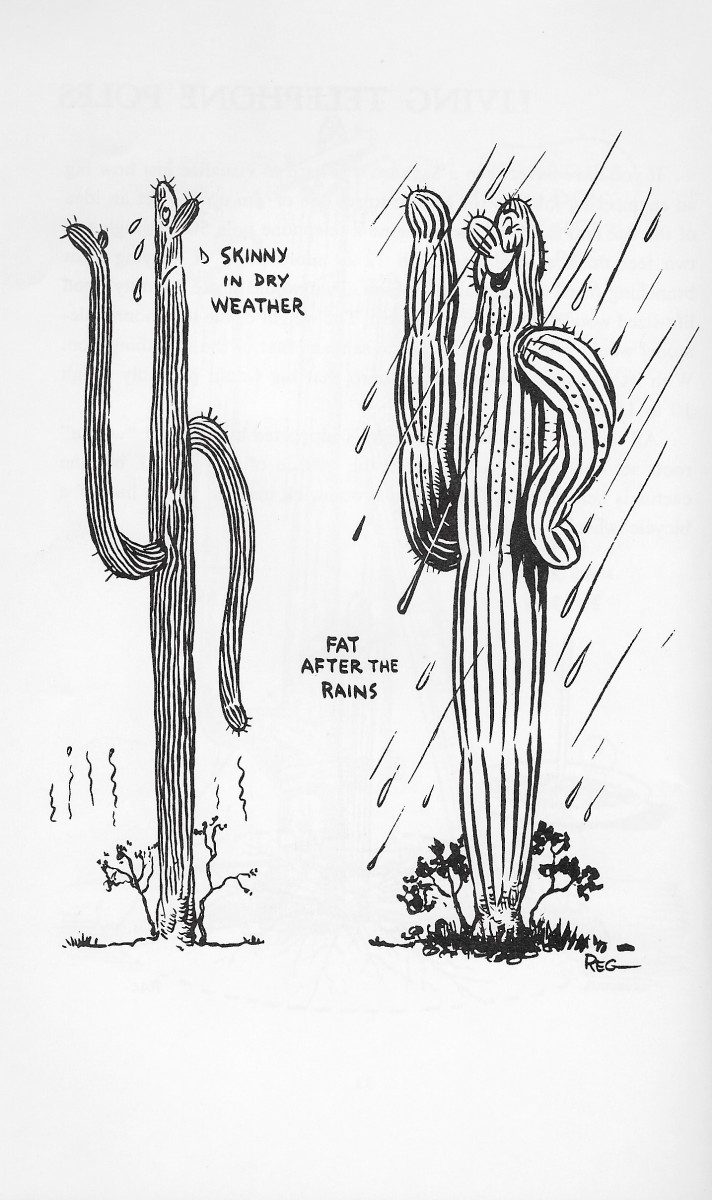 Tourists to the Sonoran Desert have always loved cactus humor.