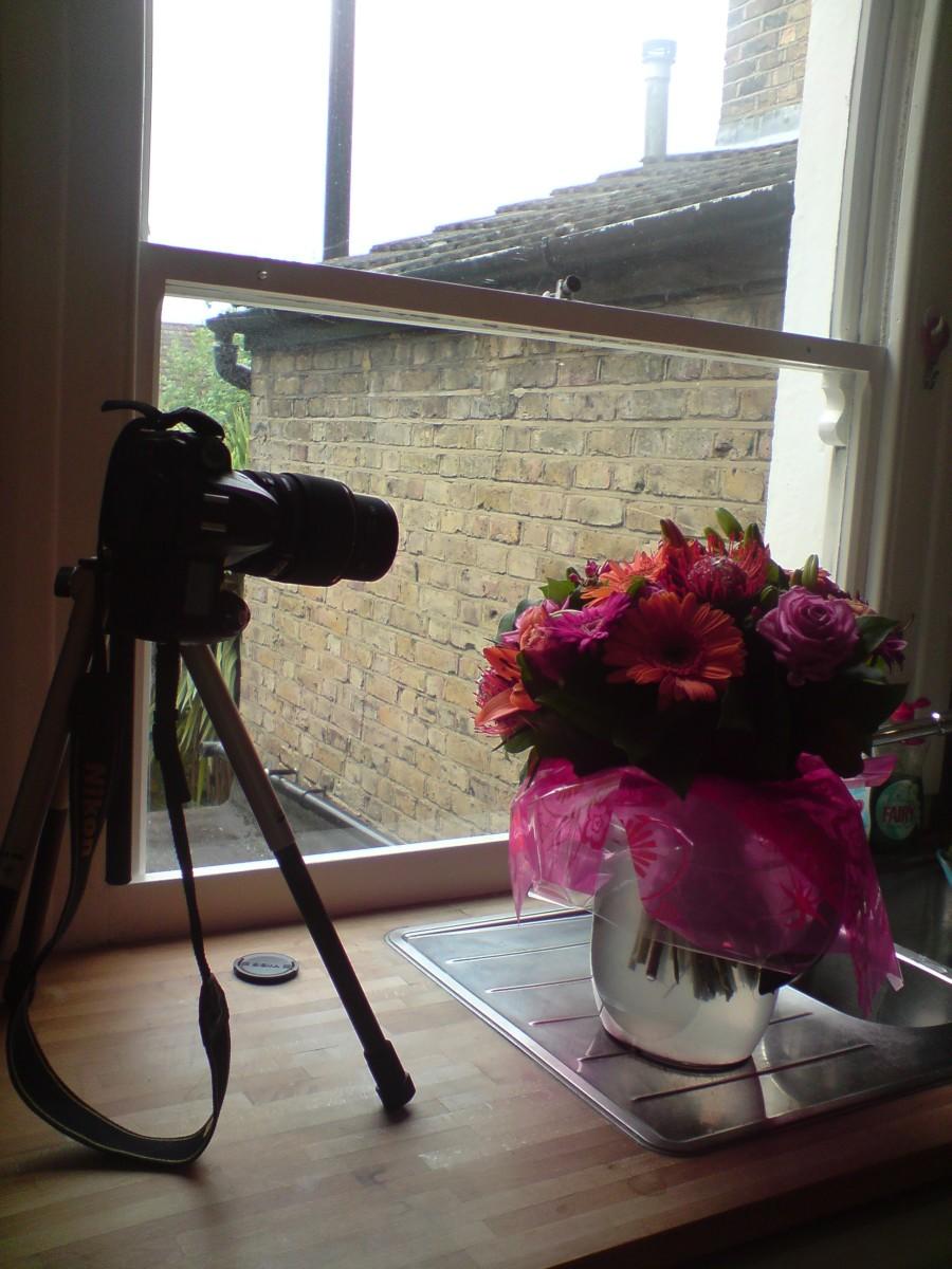Basic Macro Photography Studio