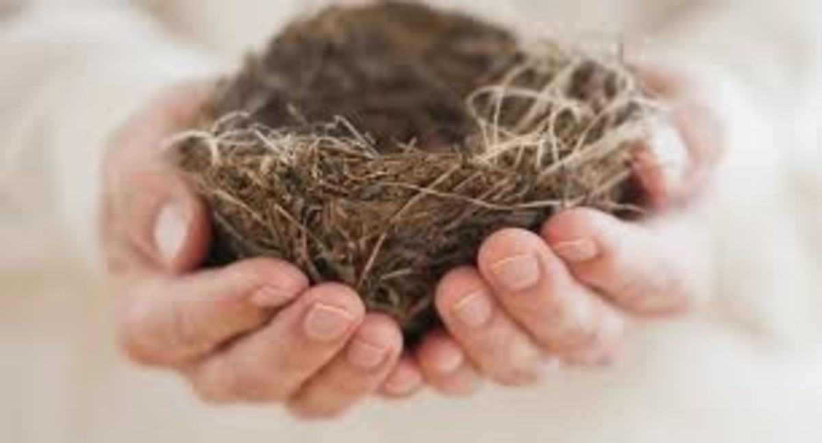 How to Get Through Empty Nest Syndrome