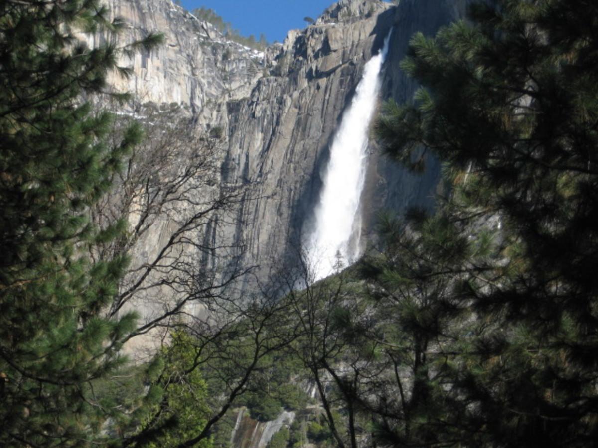 Upper Yosemite Falls From the Valley Floor