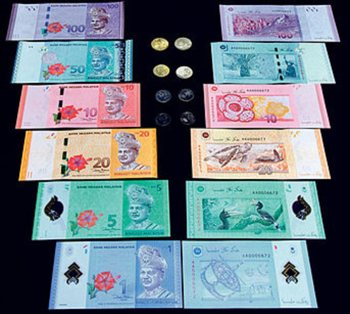 Malaysian currency, called ringgit.