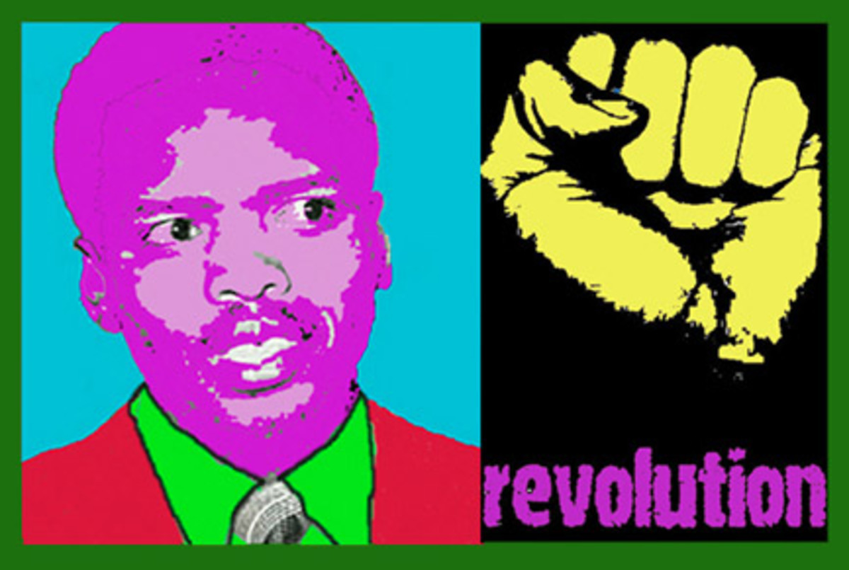 Steven Bantu Biko, The Revolutionary , leader and thinker