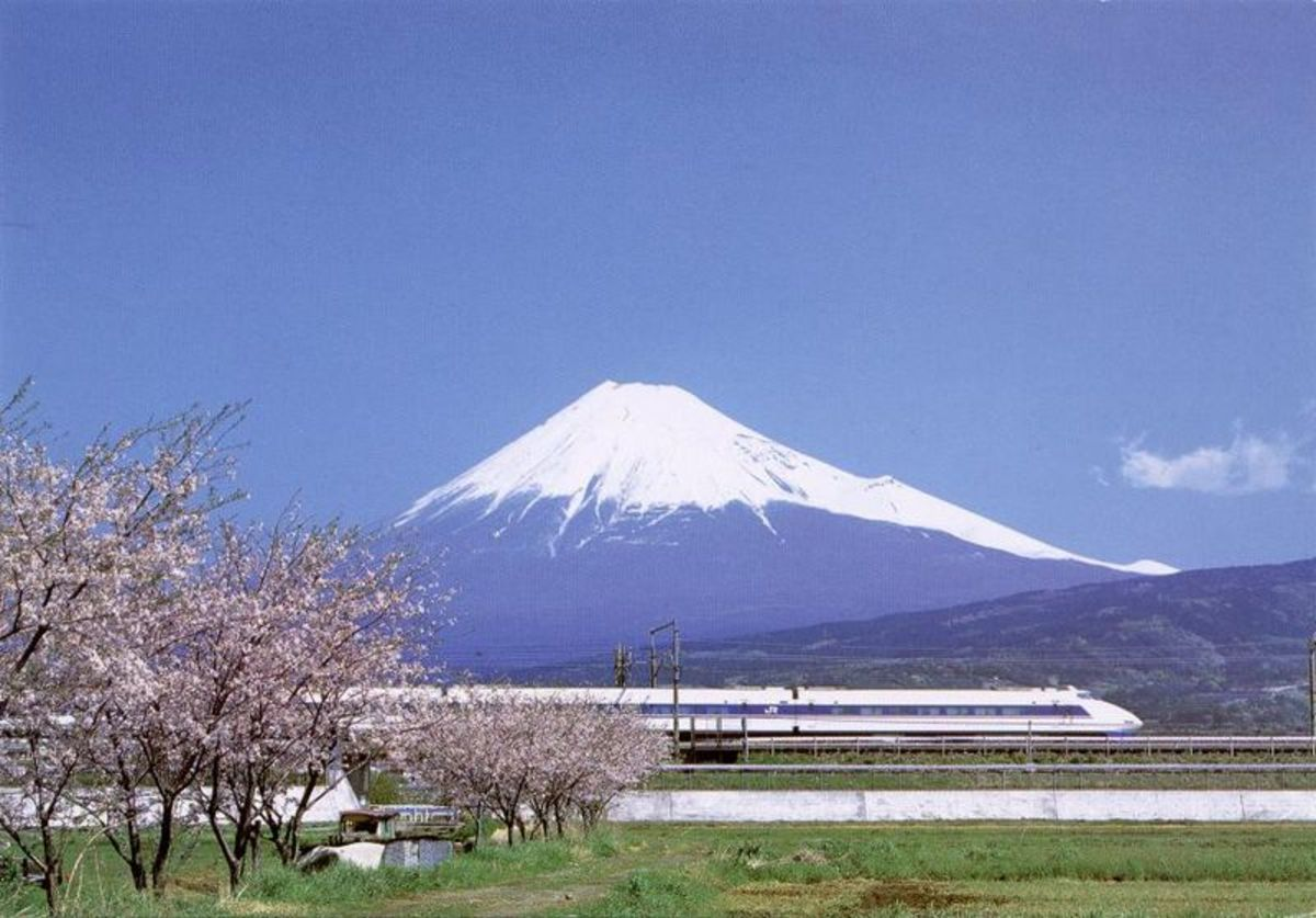 Symbols of Japan: sakura (cherry blossom), the Shinkansen, and Fuji-san.