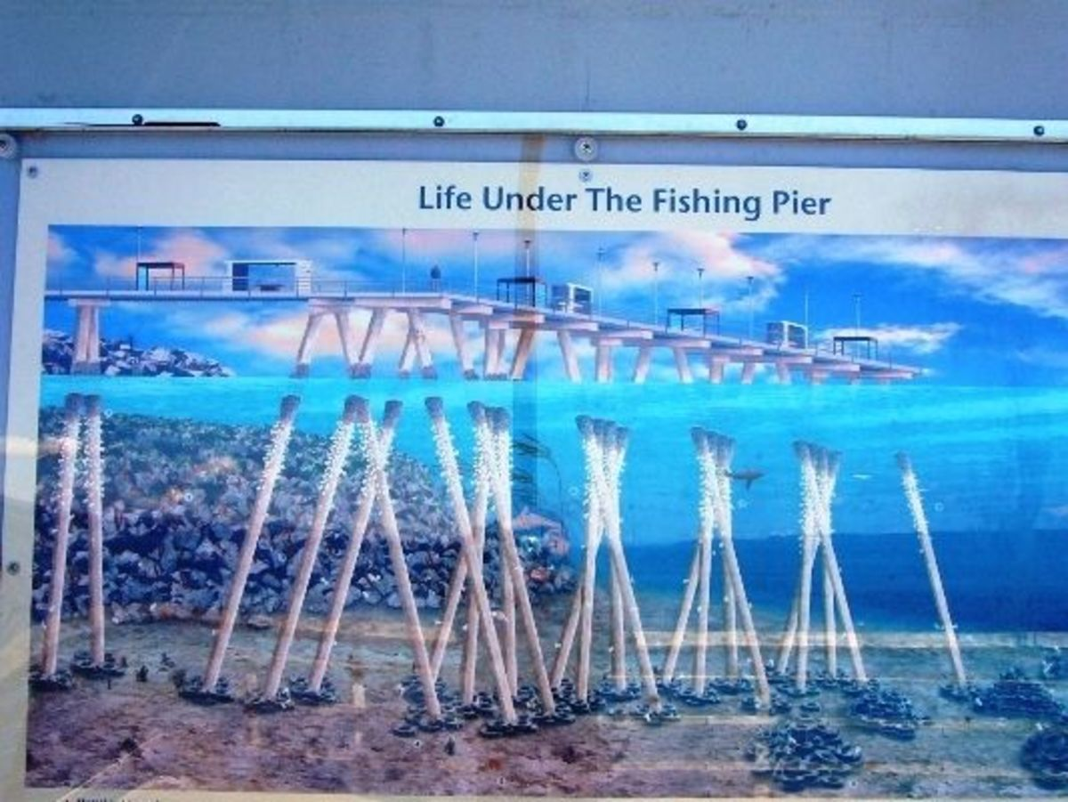 A sign showing what it's like under the pier