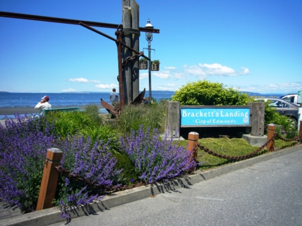 Bracketts Landing - Edmonds, WA