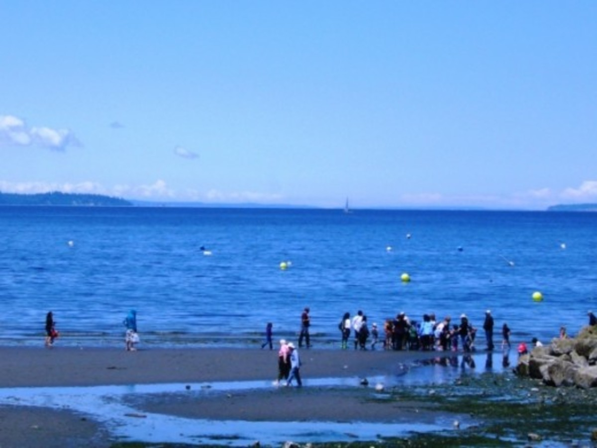 Edmonds Underwater Park