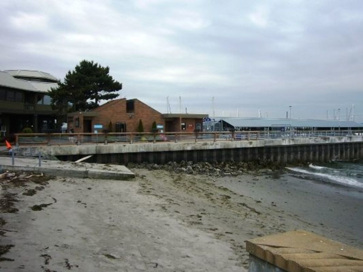 The view to the south of Olympic Beach with the restrooms, beach visitor center, fishing pier and marina.