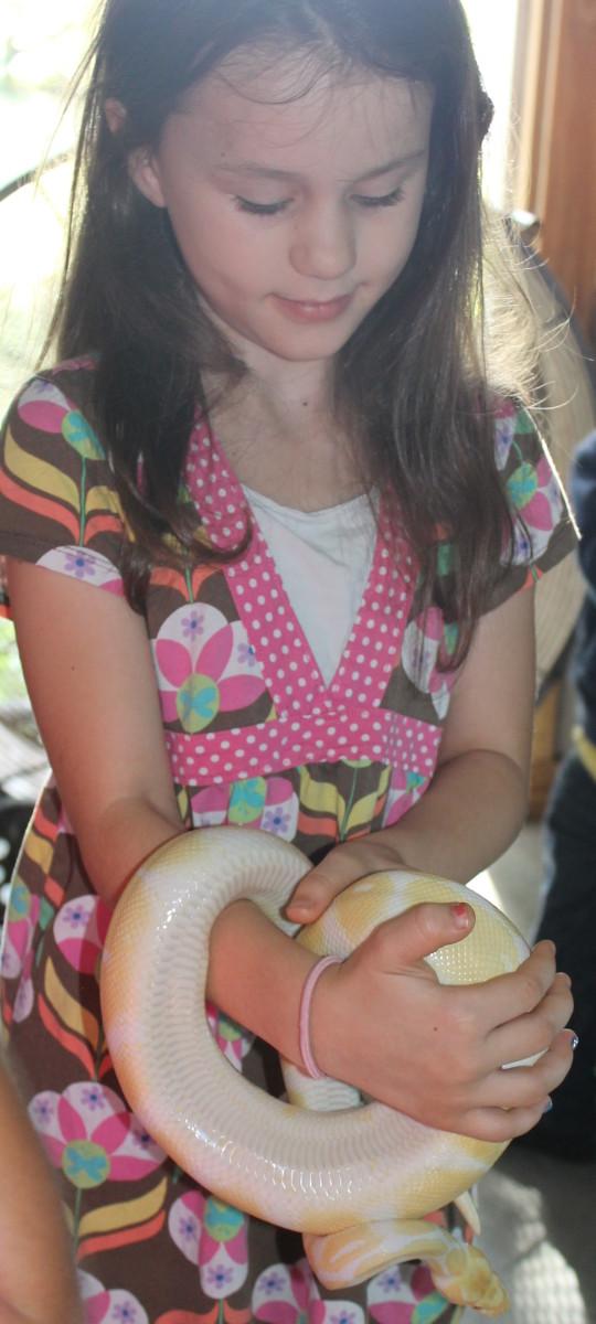 Holding a pet snake