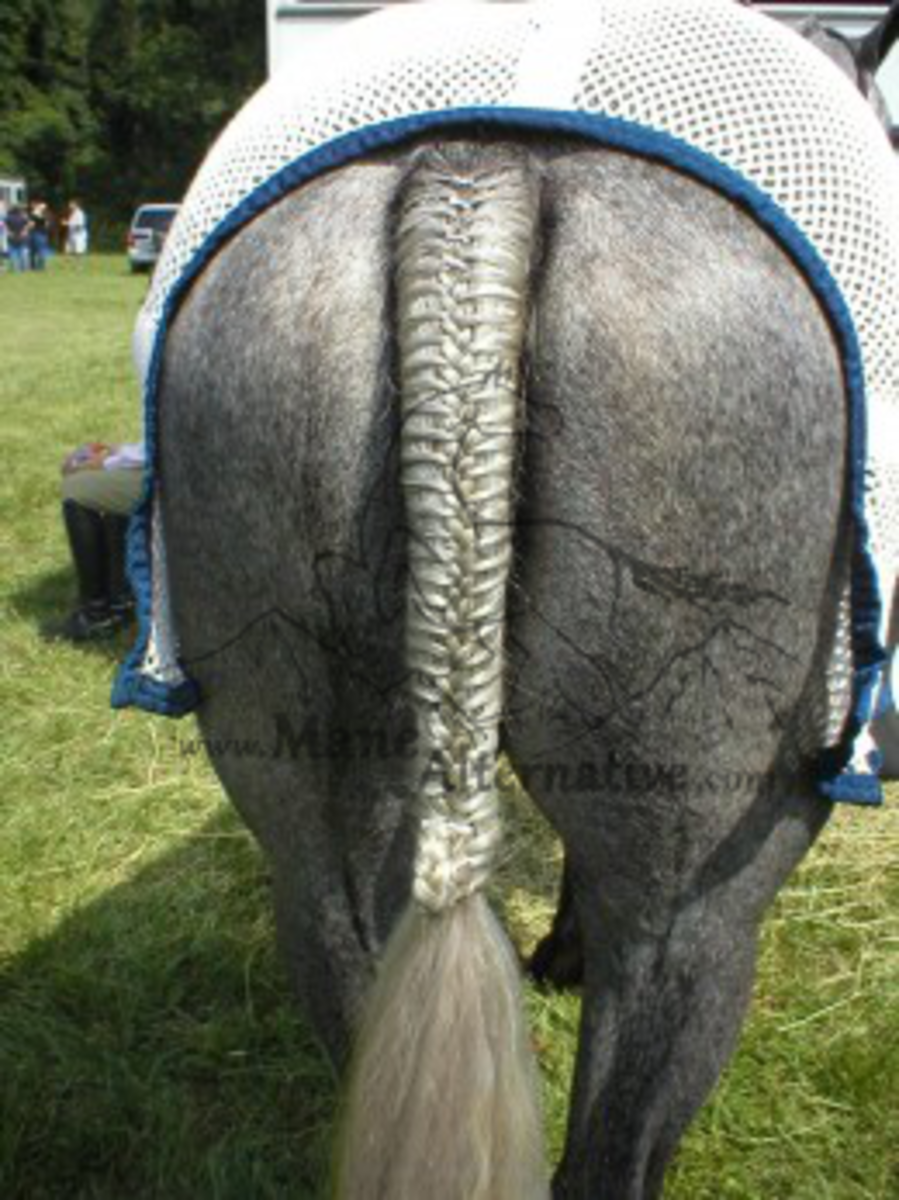 Classic style French Braid tied off with a Pinwheel