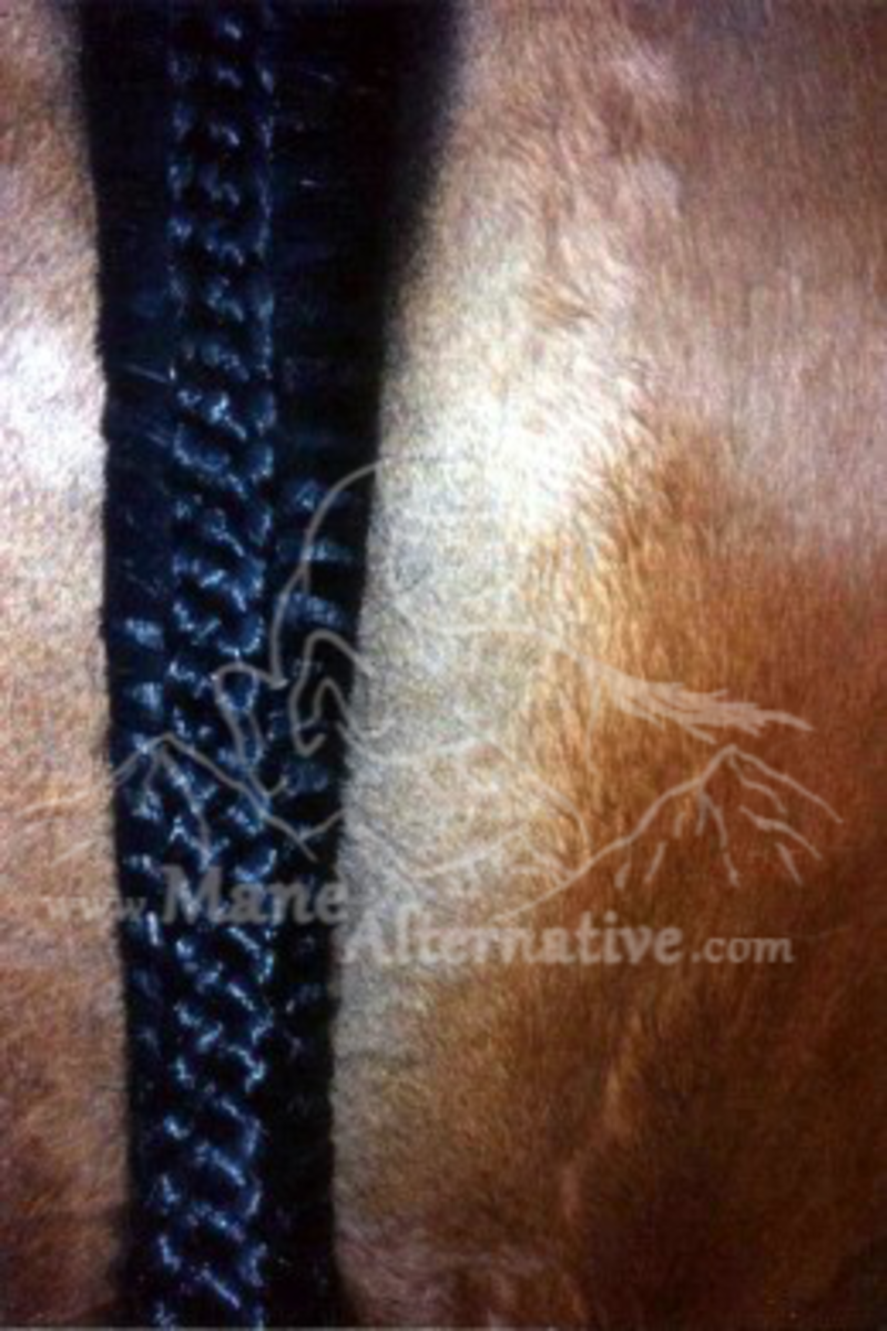The Alternative Braid up close