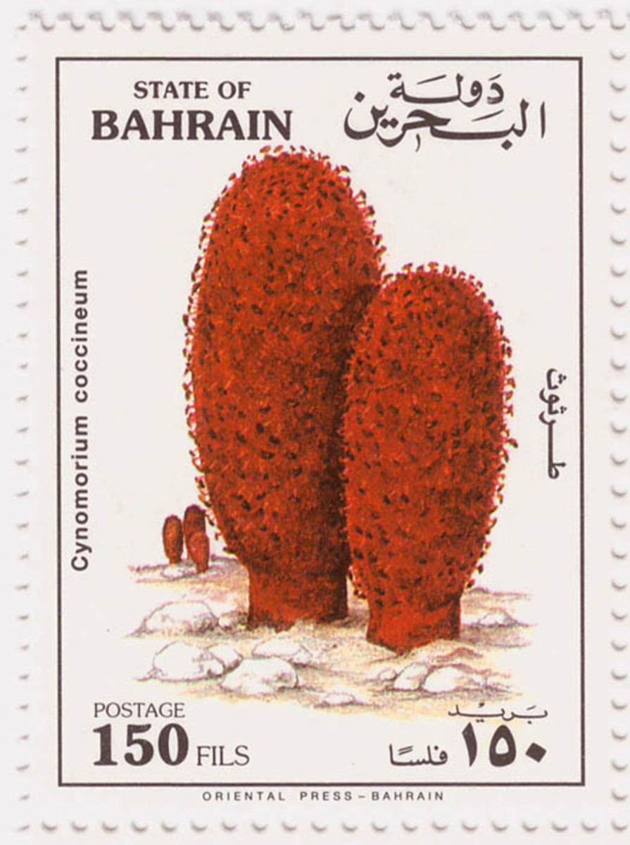 Cynomorium coccineum on Bahrain stamps.