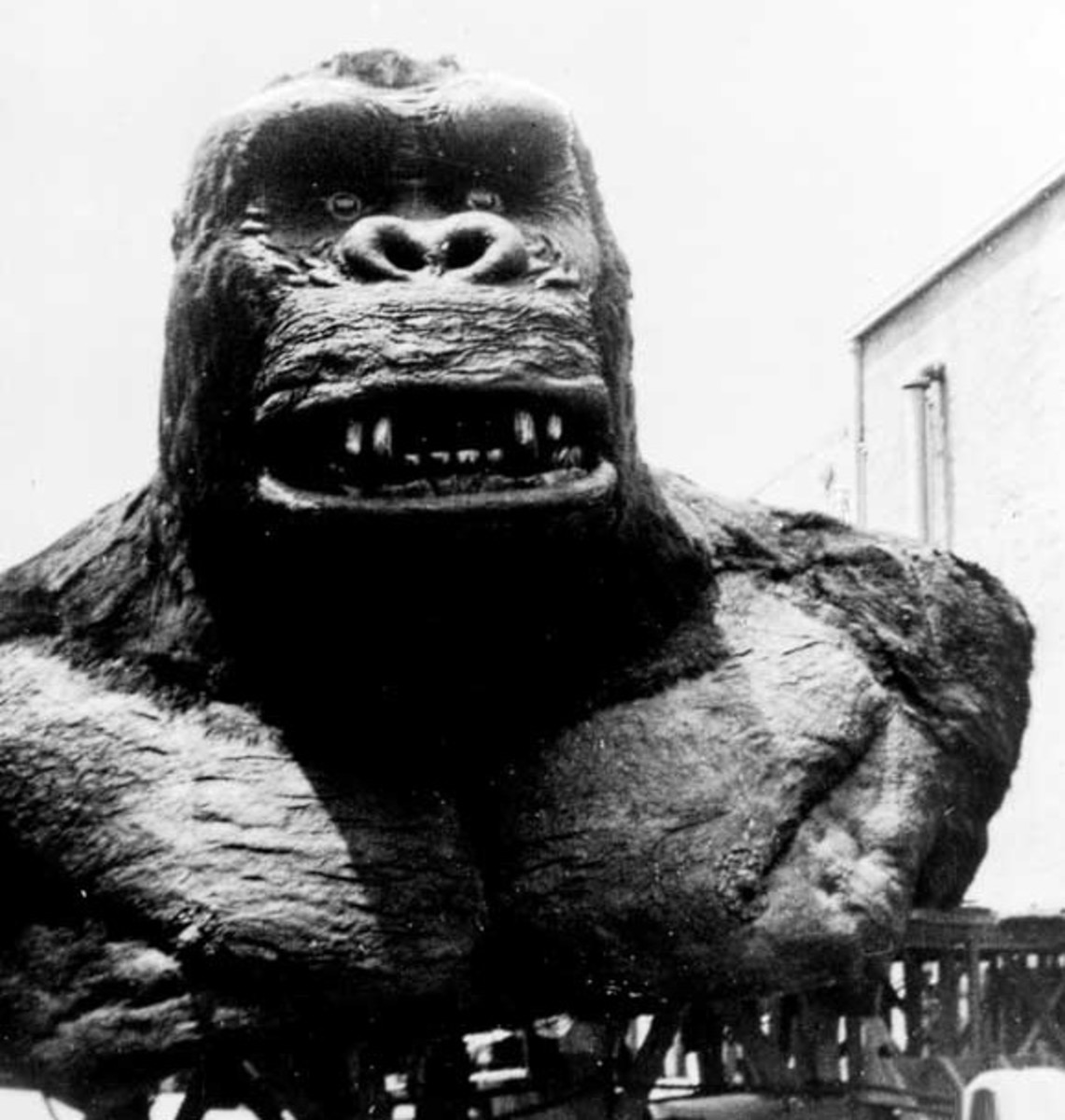 The giant bust of Kong