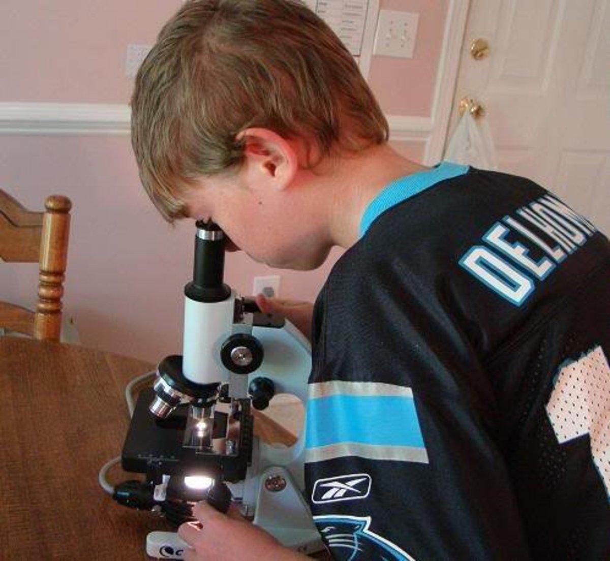 high-school-biology-labs