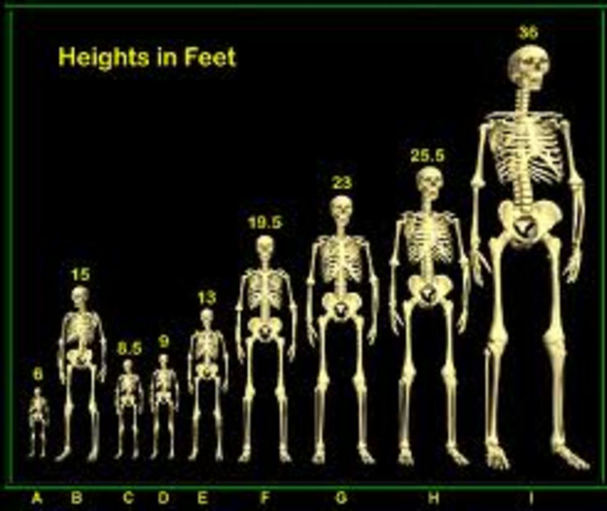 Giants have been found all over the earth, there is no doubt that they really existed just as the Bible claims.