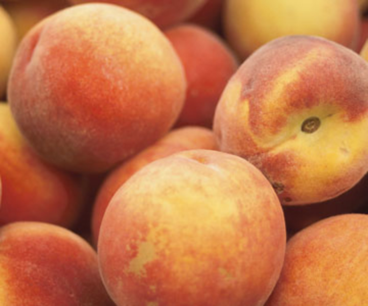 Peaches can help to combat infectious diseases, reduce cholesterol in blood,also alleviation abdominal colics and rheumatism pains.