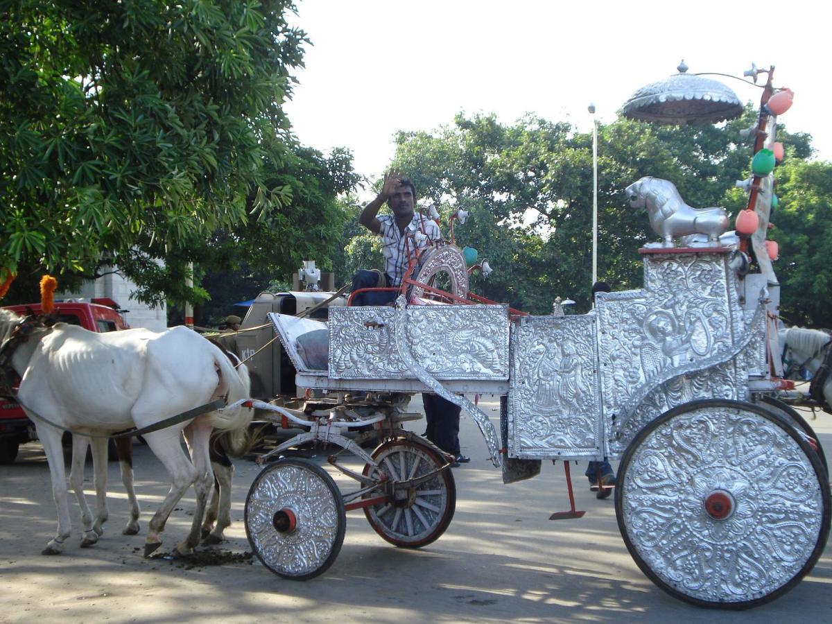 Take a royal ride
