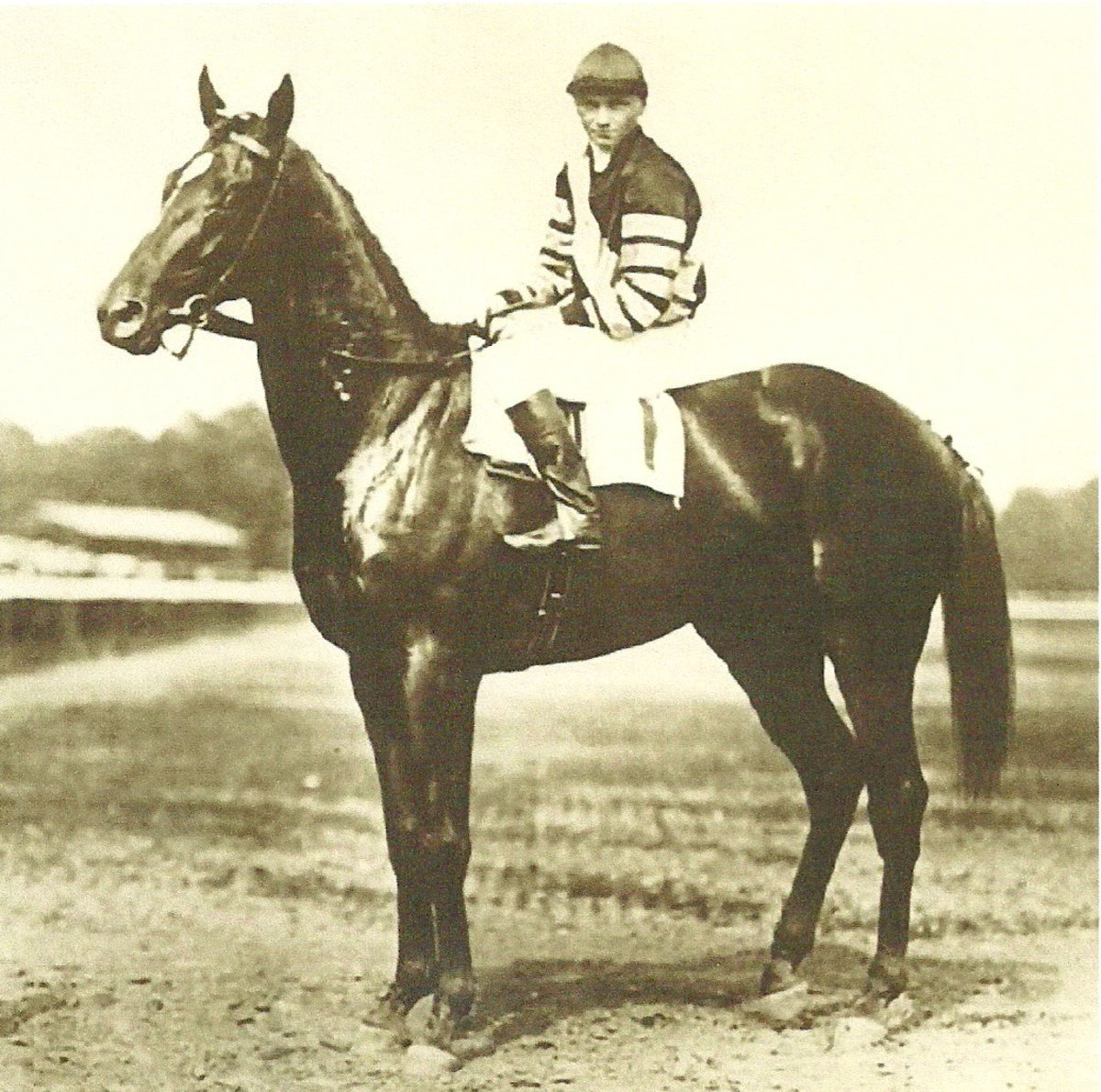 Man o' War (21: 20-1-0) is rated by a Blood-Horse publication as the No. 1 Racehorse ever.