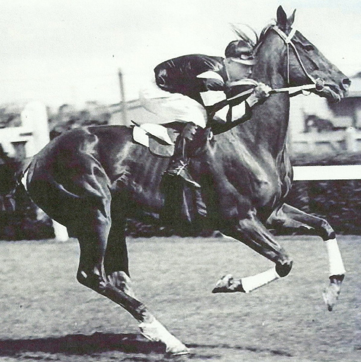 "Phar Lap, Man o' War, Exterminator, and Secretariat all were famously nicknamed ""Big Red""."