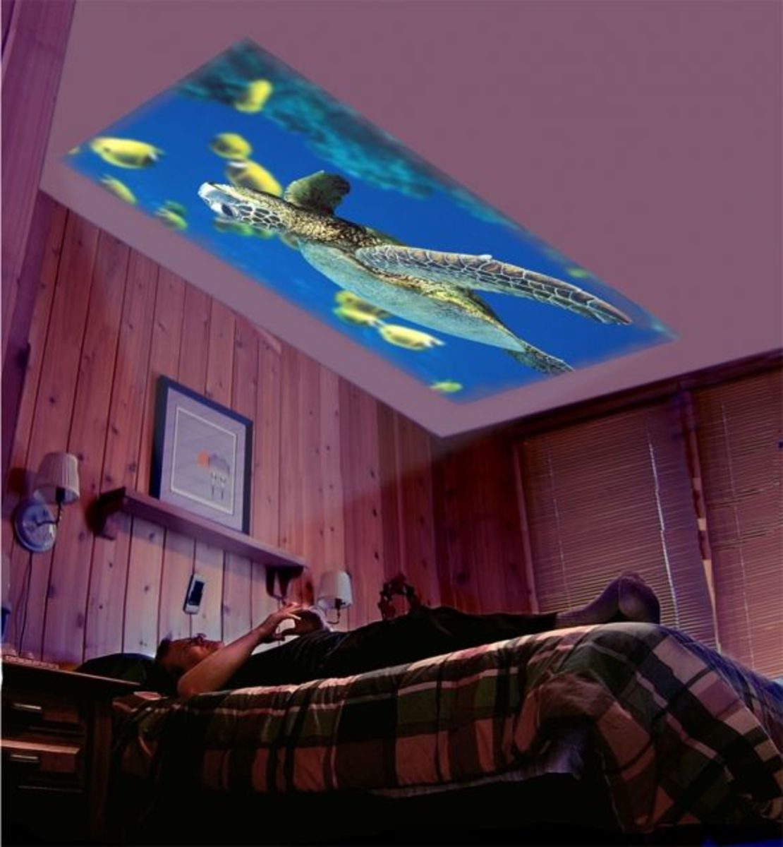 Big Screen Home Theater On The Bedroom Ceiling Diy For