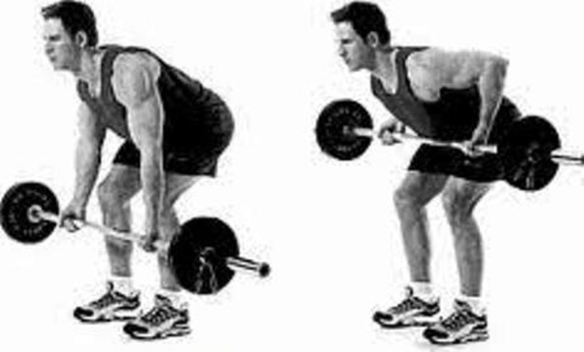 How To Perform Reverse Grip Bent Over Barbell RowsReverse Grip Barbell Row