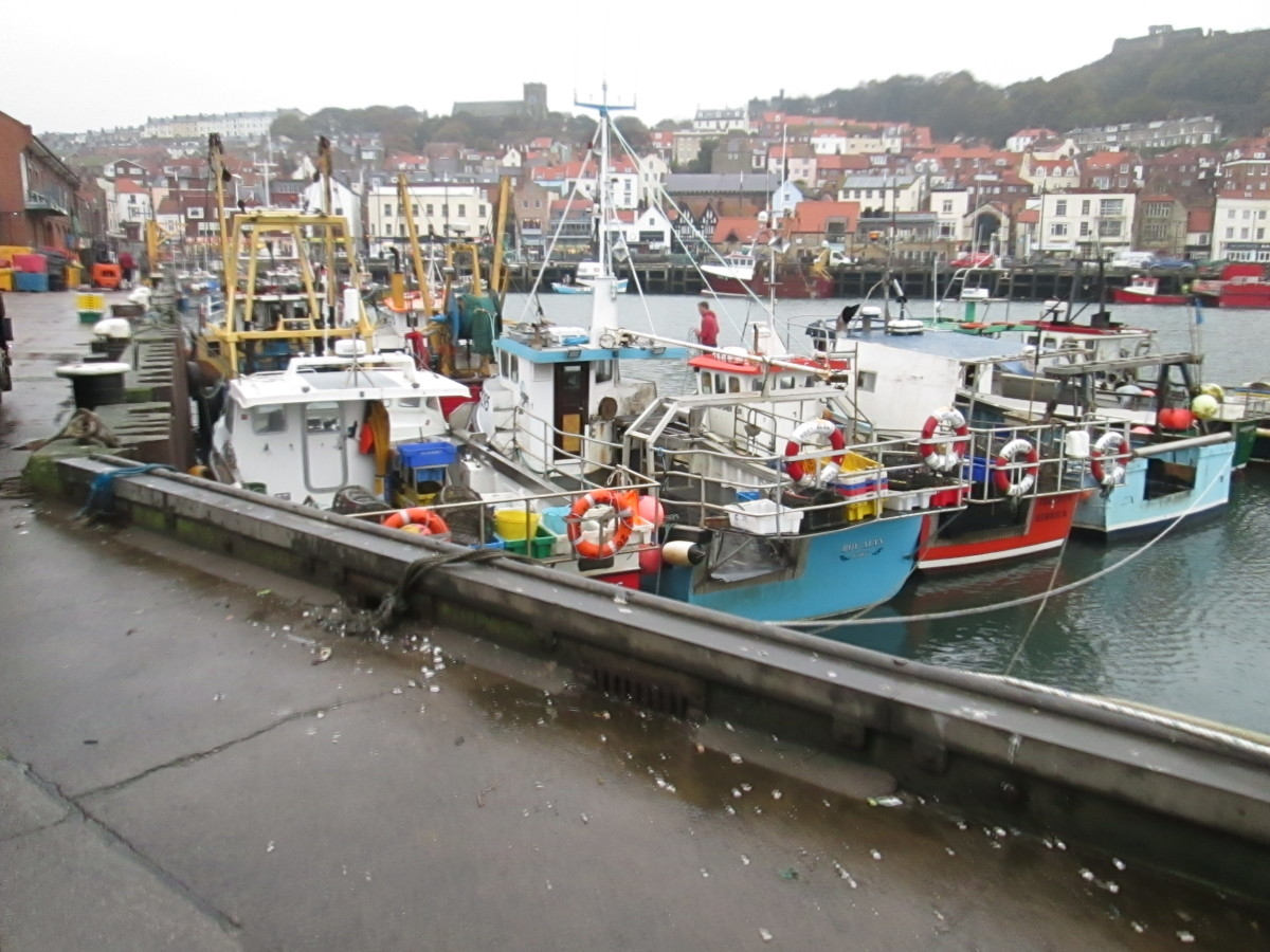 Looking back across the main harbour to the old town across a maze of trawlers and inshore fishing vessels