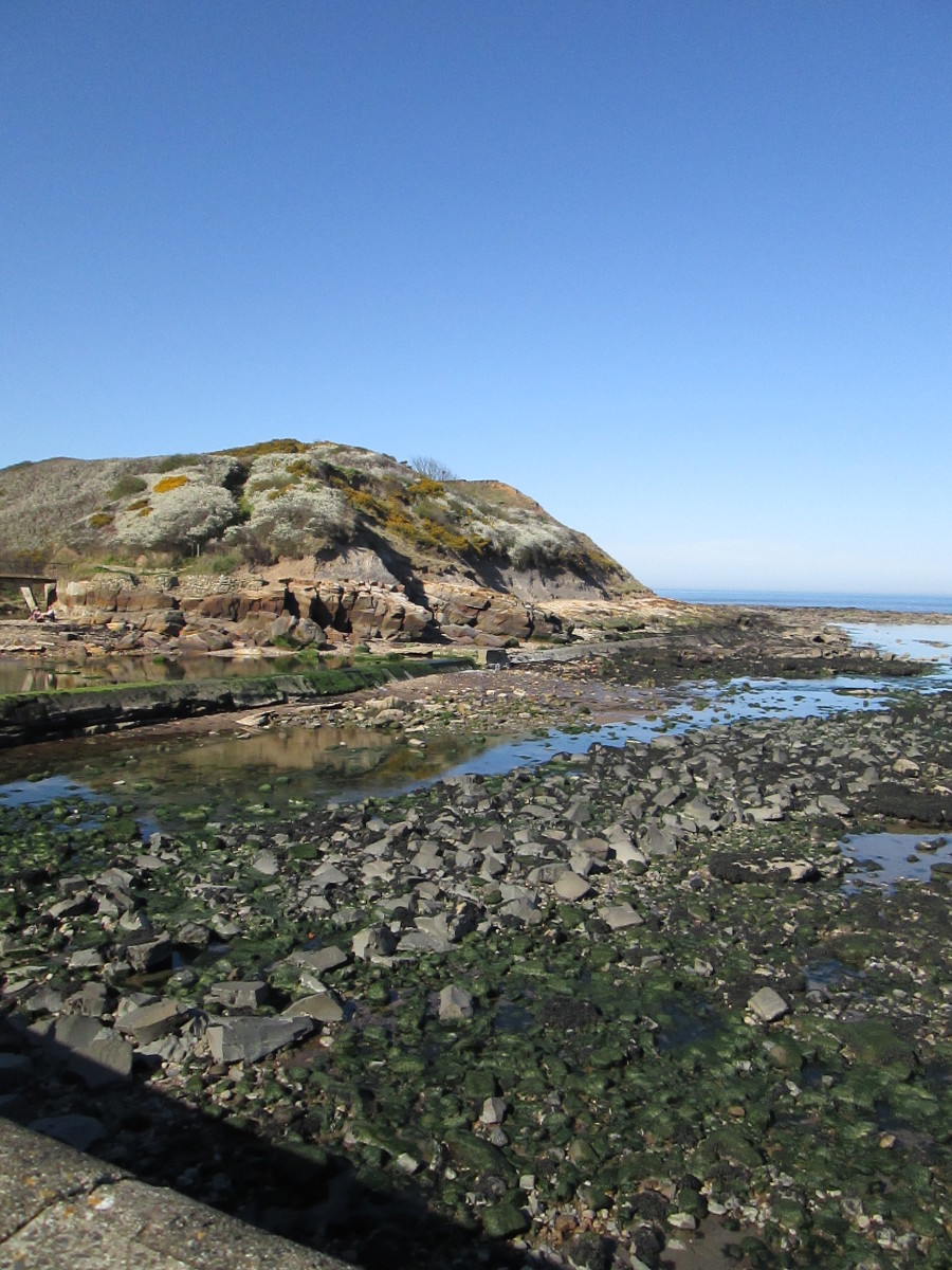 the cliff at Scalby Mills, opposite the inn at low tide