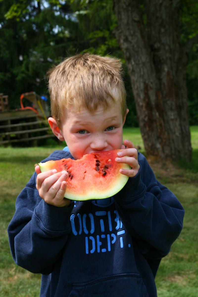 Enjoying a Sugar Baby Watermelon slice on a summer day.