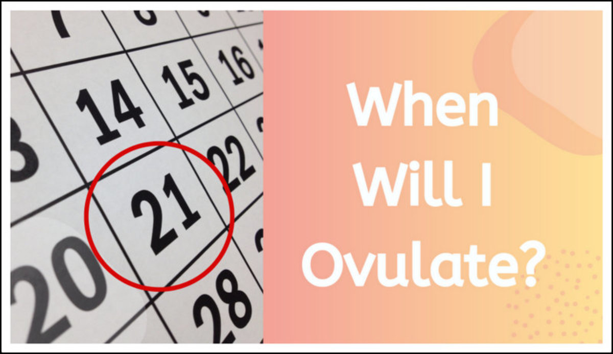 When Will I Ovulate?