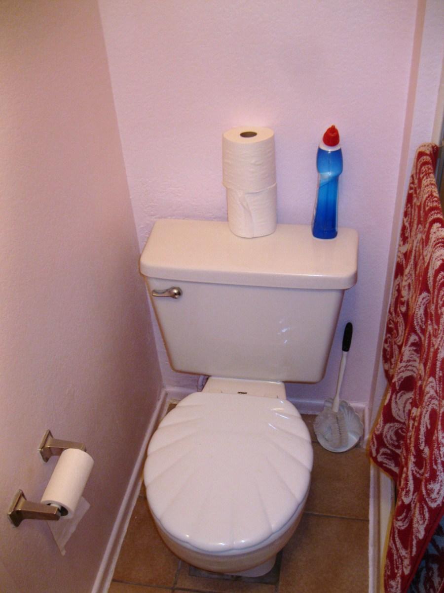 Toilet in bathroom of master bedroom