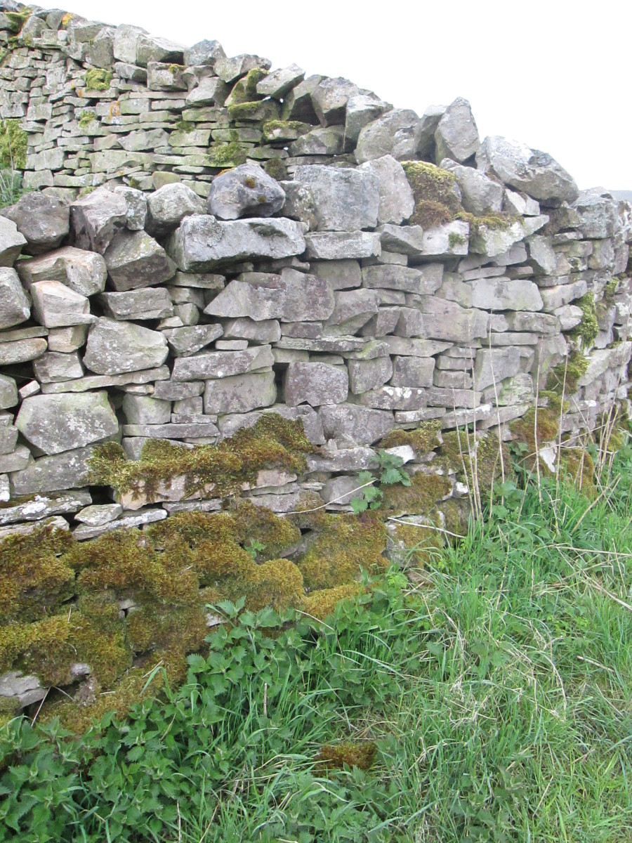 Cornerstones of a field boundary high above Swaledale - a complex grid of un-cemented stonework for which the Dales are renowned. Many areas of Yorkshire have their own styles, as do other parts of Britain