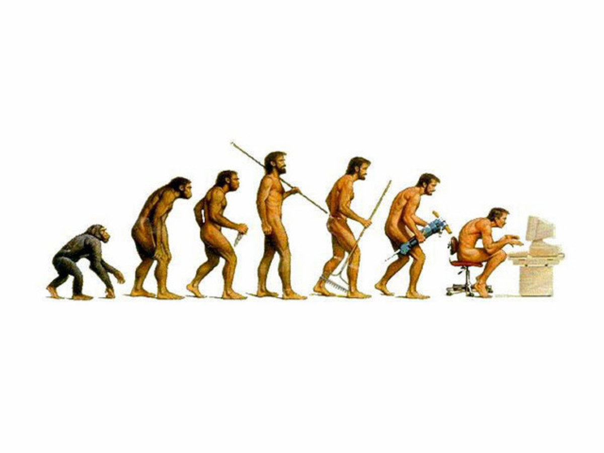 Backward Evolution